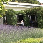 restaurant giverny terra cafe 617 1 150x150 Des expositions Gourmandes !