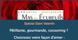 Saint Valentin - Le Mas des Ecureuils ***