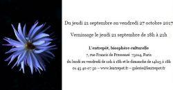 Exposition photographique Elia Rodière - L'Entrepôt
