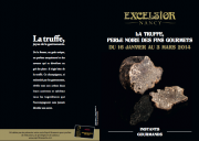 Animation truffe