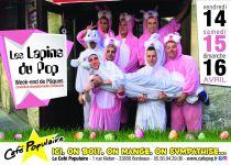 Les lapins du Pop