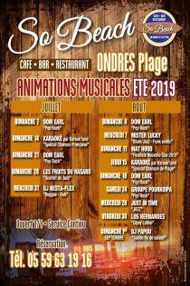 Animations musicales été 2019