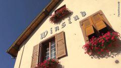 Le restaurant Le Rosenmeer à Rosheim