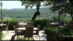 Le restaurant La Verdoyante à Gassin