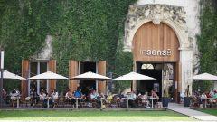 L'Insense à Montpellier