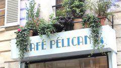Restaurant Café Pelican - Paris