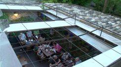 Restaurant L'aile ou la Cuisse - Saint-Rémy-de-Provence