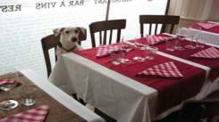 Restaurant Le Bateau Ivre - Reims