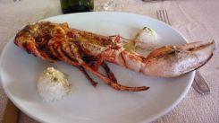 Restaurant Les buveurs de Lune - Saint-Malo