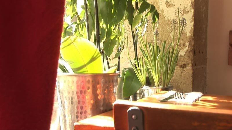Restaurant jardin des p tes paris en vid o hotelrestovisio for Restaurant jardin paris