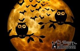 halloween-975519__180