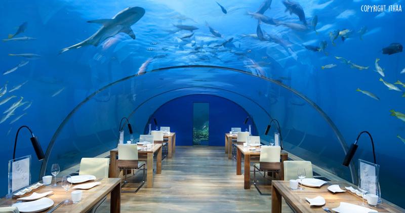 entete_img_maldives_restaurant_conrad_rangali_ithaa_underwater_restaurant_sous_la_mer