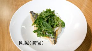 daurade-royale