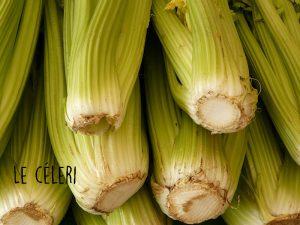 celericouv