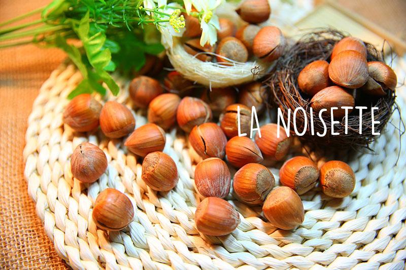 noisetteblog